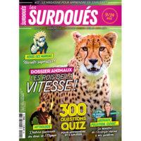 Les Surdoués magazine n°11 - couverture