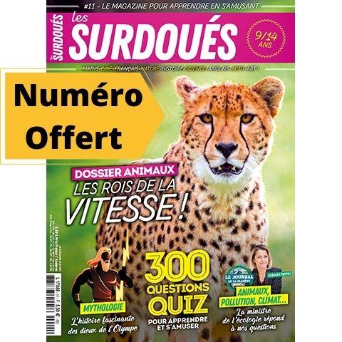 Couverture_du no11 magazine Les Surdoués_offert