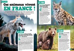 Magazine_Les Surdoues_N13_les animaux