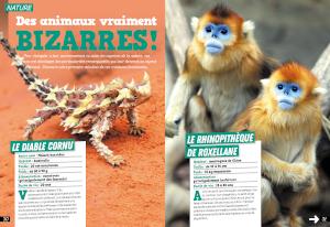 Des animaux bizarres_n°14_les surdoues magazine